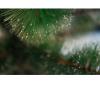 Сосна искусственная Анастасия 210 см